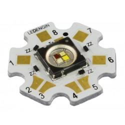 LED Engin LZ4-24MDCA-0000