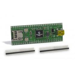 Microchip TCHIP010